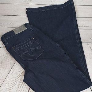 Anthropologie Level 99 Jeans Super Flare Size 31